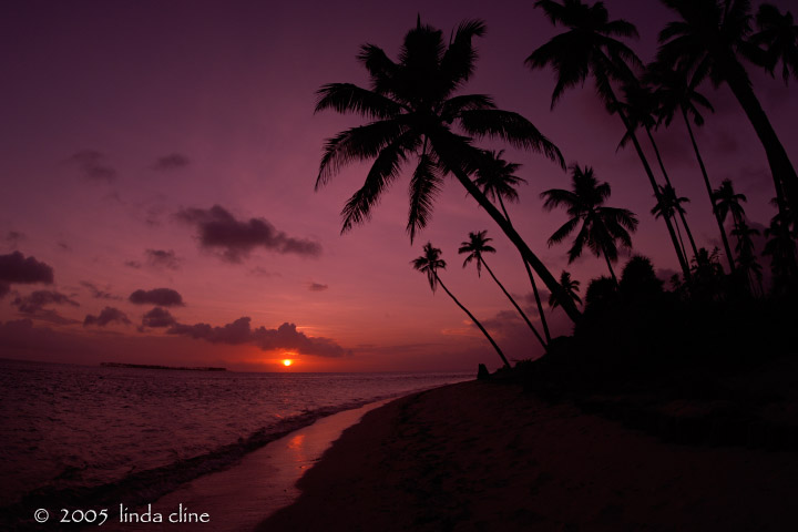 Wakatobi Sunset